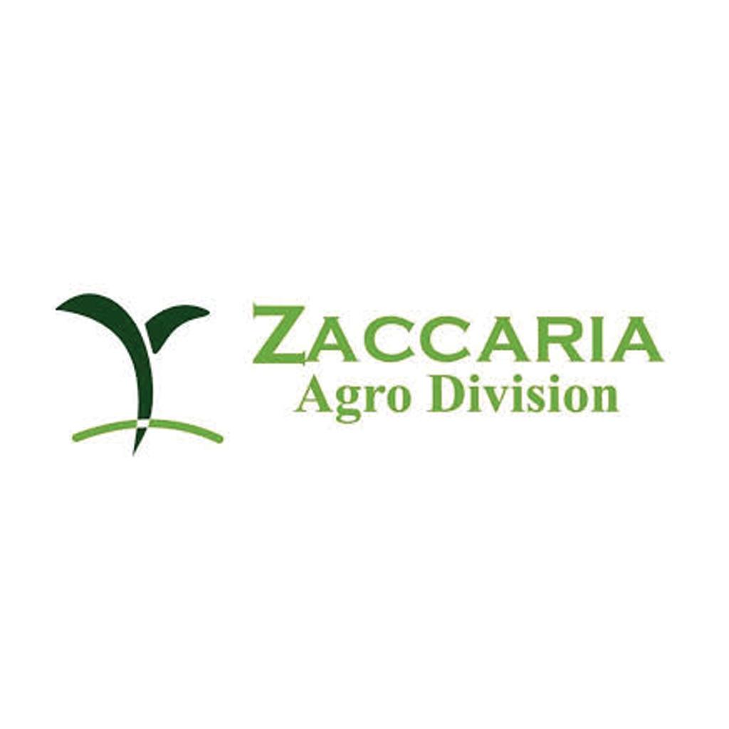 zaccaria hd